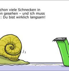 Humor zum Sonntag: Ich habe ja schon viele Schnecken in meinem Leben gesehen - und ich muss ehrlich sagen: Du bist wirklich langsam!