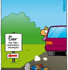 Humor zum Sonntag vom 25.9.2016: Eier von Frei-Laufenden Hühnern