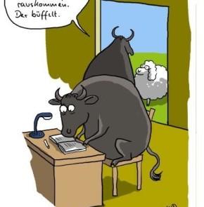 Humor zum Sonntag: Der Uli kann jetzt nicht zum Spielen rauskommen. Der büffelt.