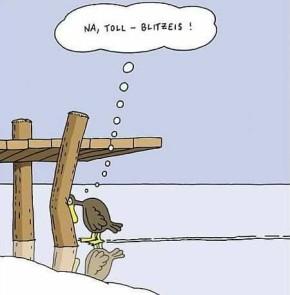 Humor zum Sonntag: Na toll - Blitzeis