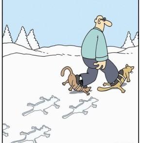 Humor zum Sonntag: Wie man Tierspuren im Schnee richtig deutet. Heute - Katzen