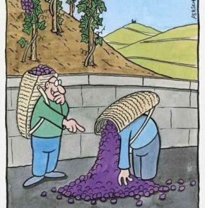 Humor zum Sonntag: Der beliebte Weinleser-Schwerz