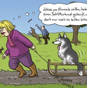 Humor zum Sonntag: Wieso, um Himmels willen, habe ich mir einen Schlittenhund gekauft, wo es doch nur noch so selten schneit?