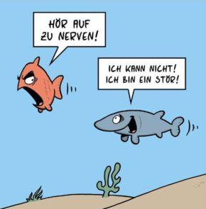 Humor zum Sonntag: Hör auf zu nerven! Ich kann nicht! ich bin ein Stör!