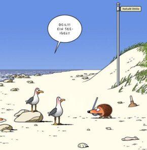 Humor zum Sonntag: Geil! Ein See-Igel!!