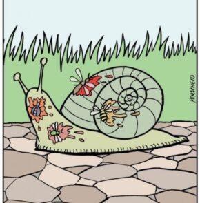 Humor zum Sonntag: Für eine Schnecke ist Jürgen relativ schnell.